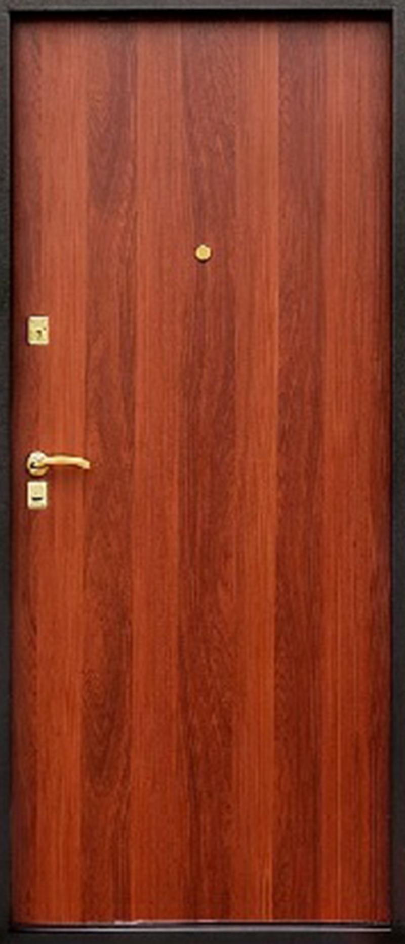 Металлические двери в Витебске фото